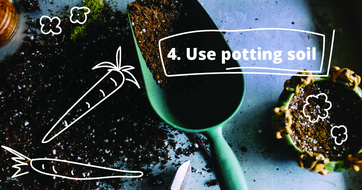 4. Use potting soil.